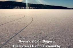 A svéd szlöjd misztikus útja Magyarországra